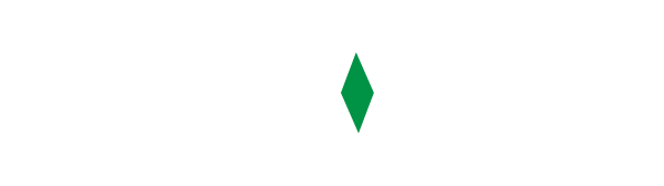 WizardMinds